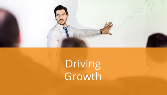 Small Business Leaders' Driving Factors of Growth